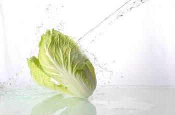 白菜水洗い