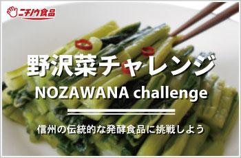 nozawana_challenge_350-230