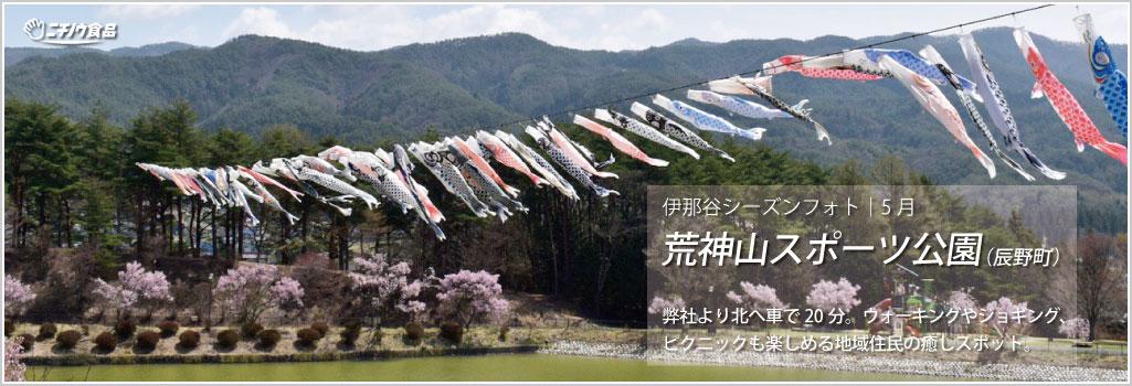 伊那谷シーズンフォト|5月-No.1