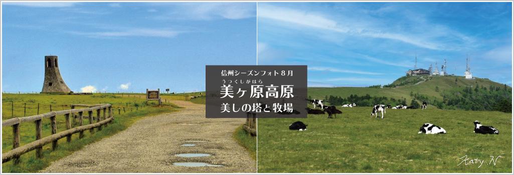 8月 美ヶ原高原