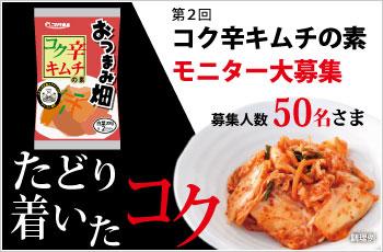 kokukara2_350-230